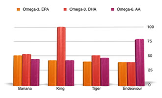 Prawn nutrition graph - comparing omega 3 and 6